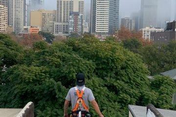 Sydney safety harness